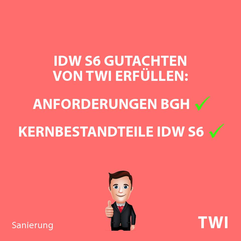 """Textbild zu IDW S6 Gutachten: """"TWI Sanierungsgutachten nach IDW S 6: Anforderungen BGH Kernbestandteile IDW"""""""