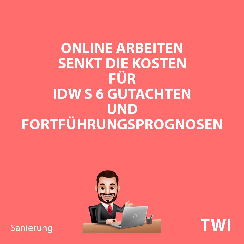 """Textbild: """"Online Arbeiten senkt die Kosten für IDW S 6 Gutachten und Fortführungsprognosen"""""""